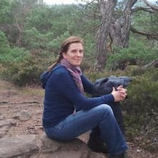 Viola User Profile