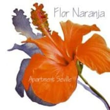 Apartment Flor Naranja User Profile