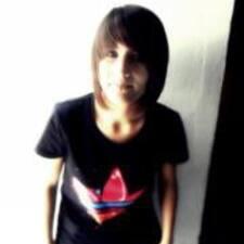 Profil Pengguna Manoli