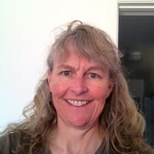 Suzy Brugerprofil