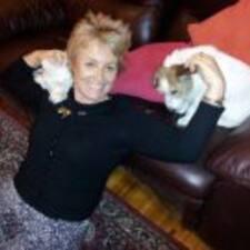 Mary-Lynne User Profile
