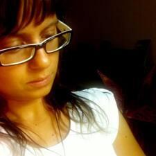 Mica User Profile
