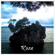 Roza User Profile