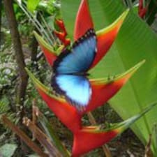 Mariposario User Profile