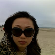 Yibei User Profile