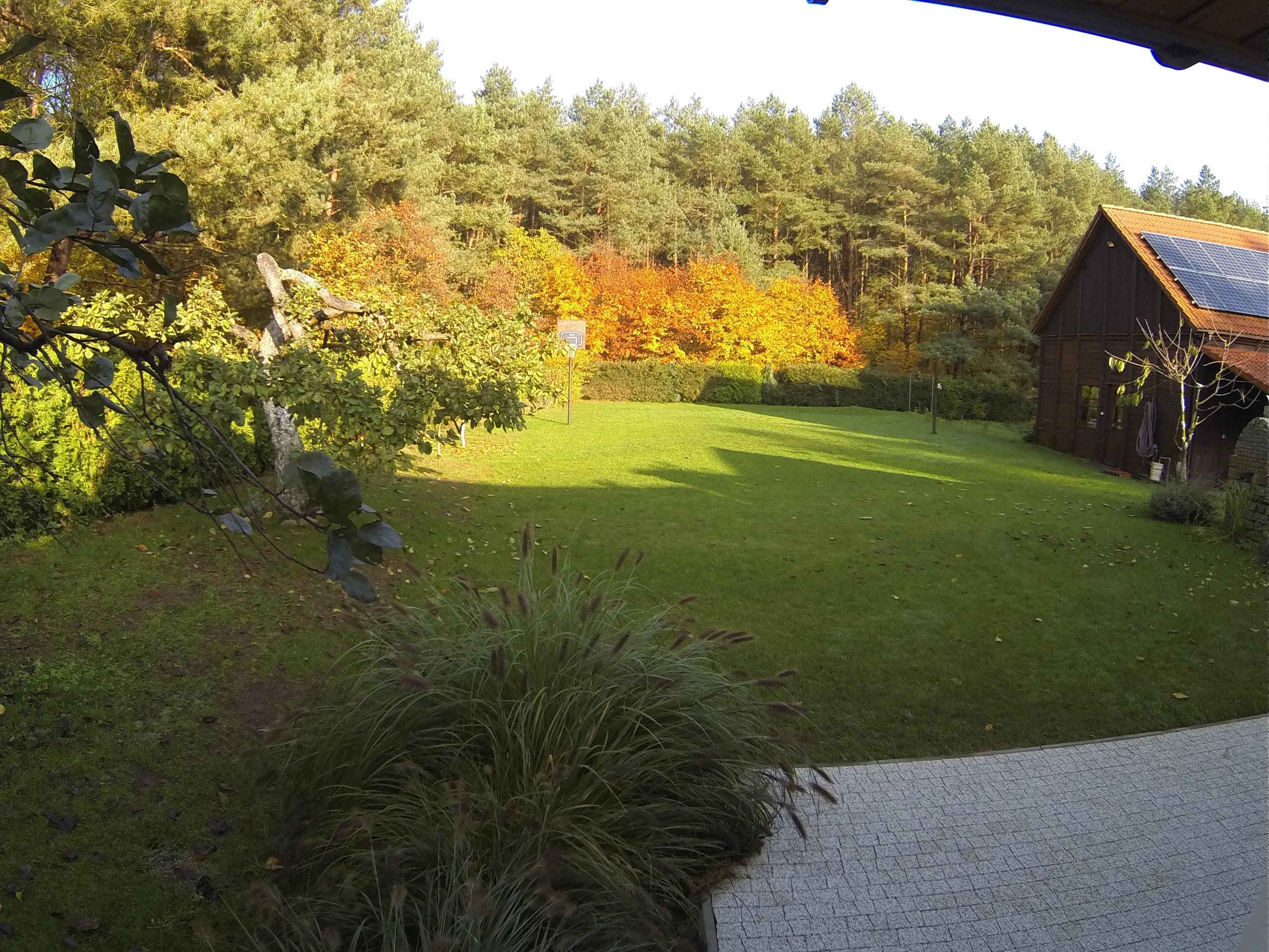 Allein im Wald Ostsee Ferienhaus Dany Raj Houses for