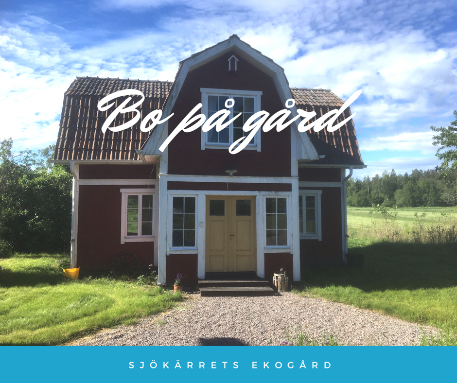 Torp nra bad och Arvika - Cabins for Rent in Arvika S - Airbnb