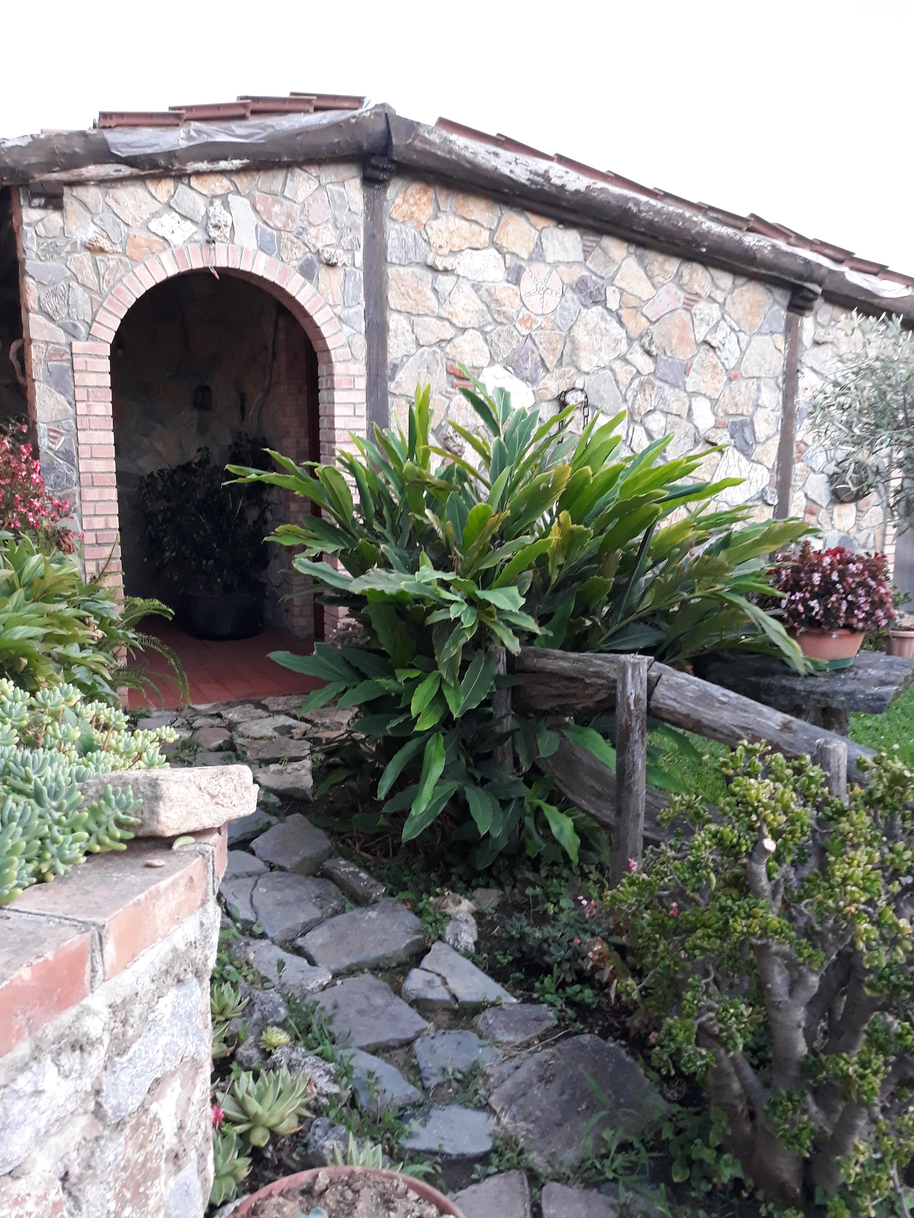 """Mini Laghetto Per Terrazzo casa """"green"""" tra mare e patrimonio unesco. - guesthouses for"""