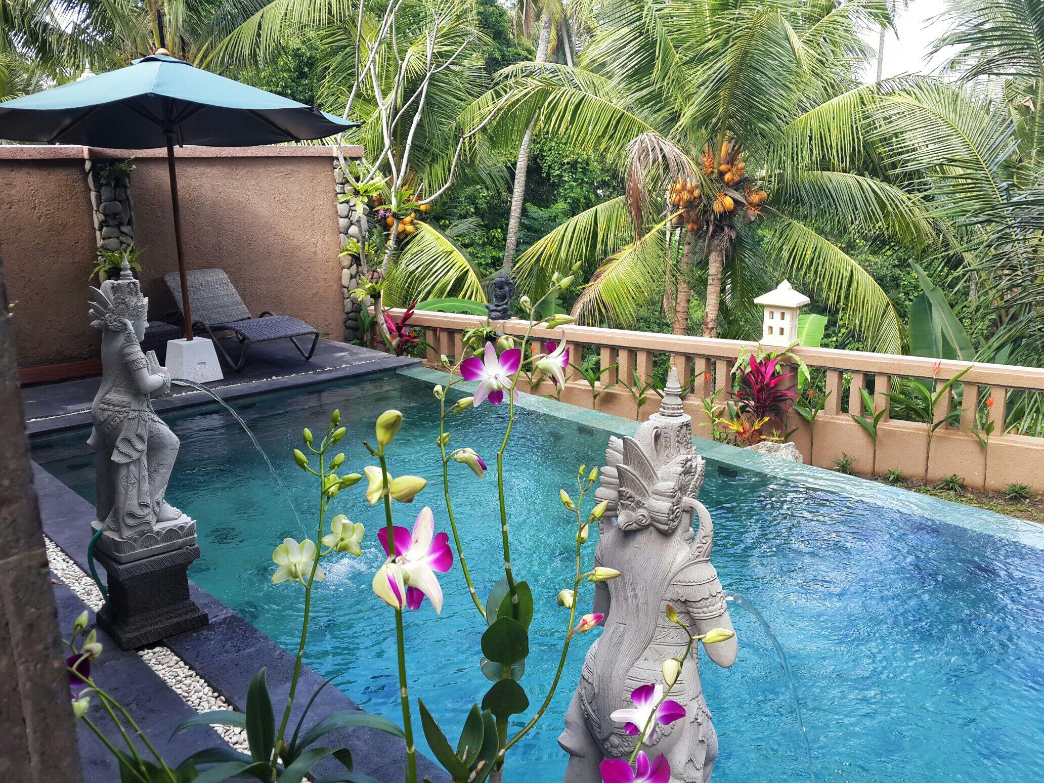 Villa Cilinaya 2br Kitc Priv Pool Resorts For Rent In Ubud Bali Indonesia