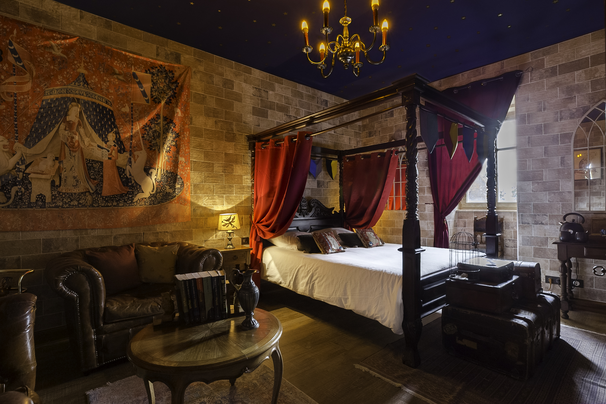 Harry Potter themed room in Colmar ! - Departamentos en renta en