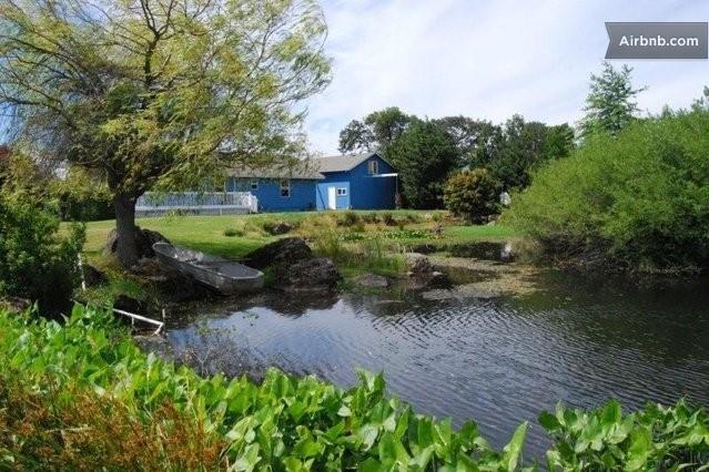 Huge Backyard Pond : Large Backyard Fishing Ponds Duck pond in hood river