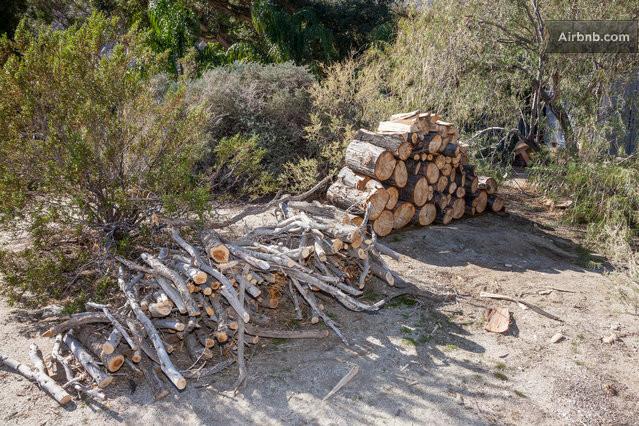 Plenty Of Firewood