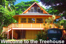 Treehouse #1 (Walk to Beach) Kauai