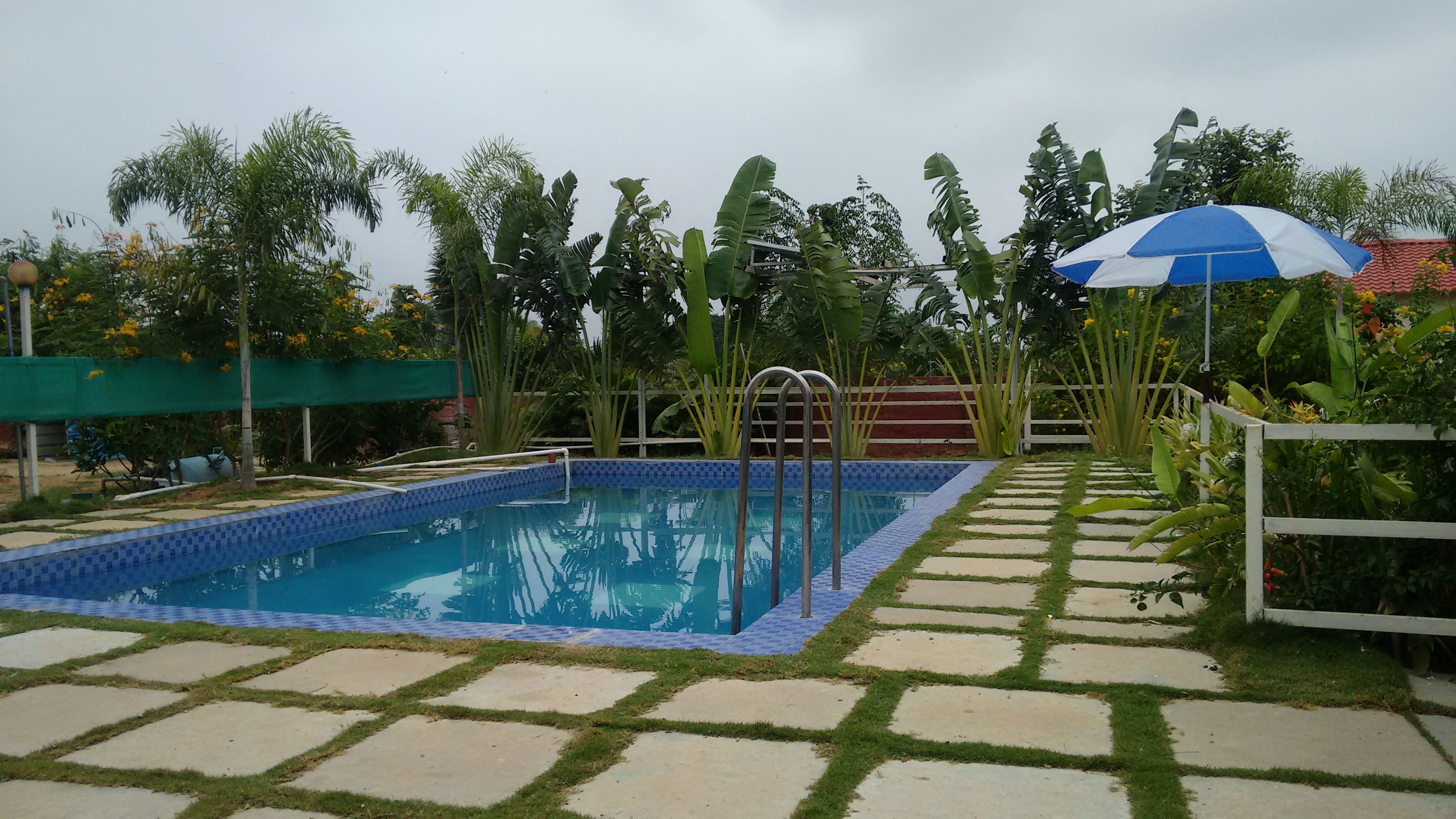 Farm House Stay With Swimming Pool Near Hyderabad Houses For Rent In Hyderabad Telangana India