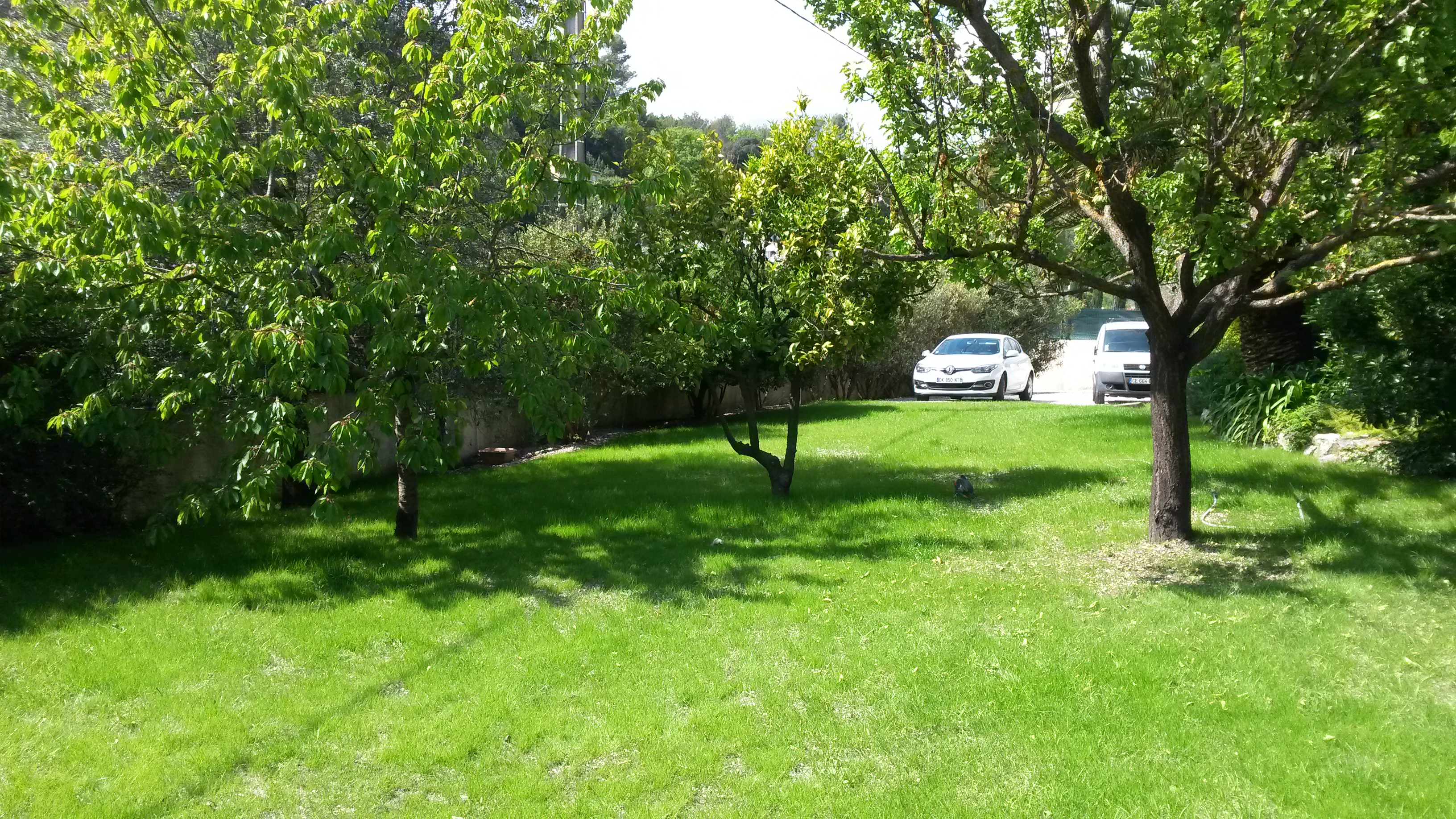 Villa Avec Chambres Climatisees 250 M2 14 Pers Villas For Rent