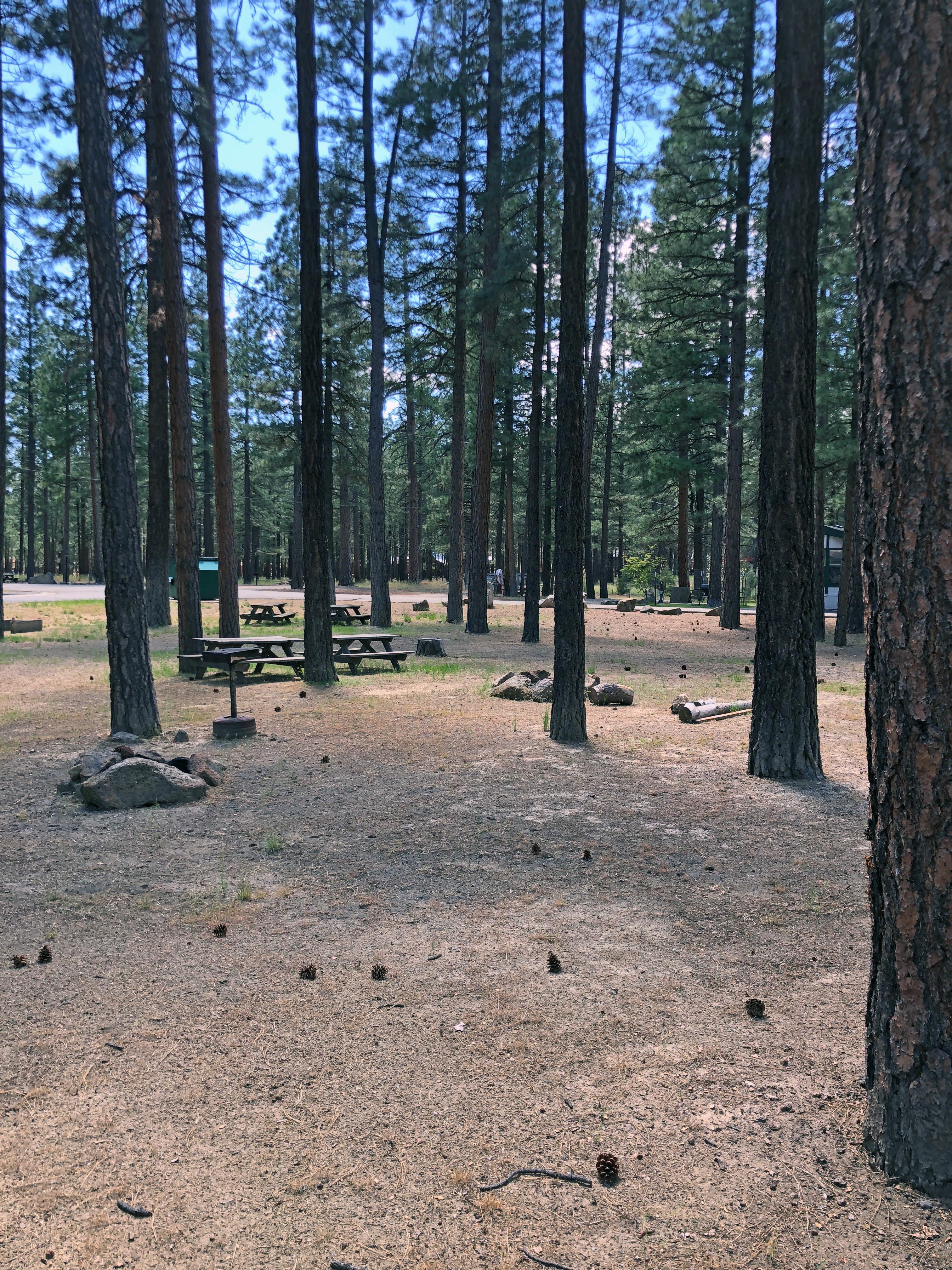 Tent Campsite in Clean Park with Amenities Tält att hyra i