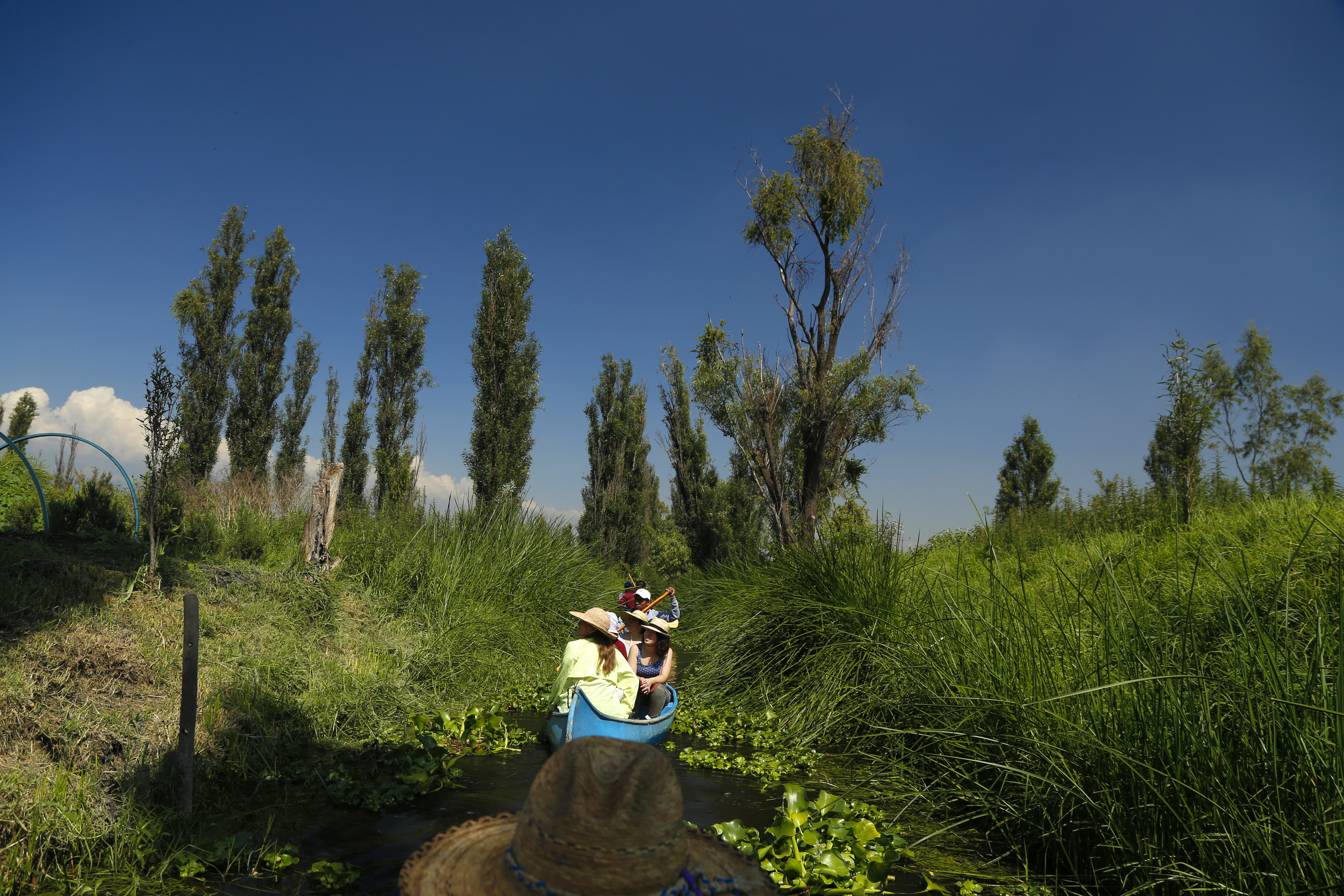 Chinampas Living An Ancient Culture Airbnb