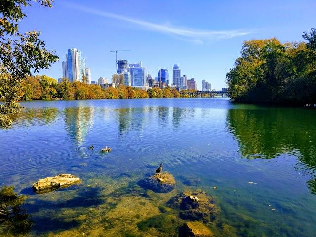 Photo of Lady Bird Lake
