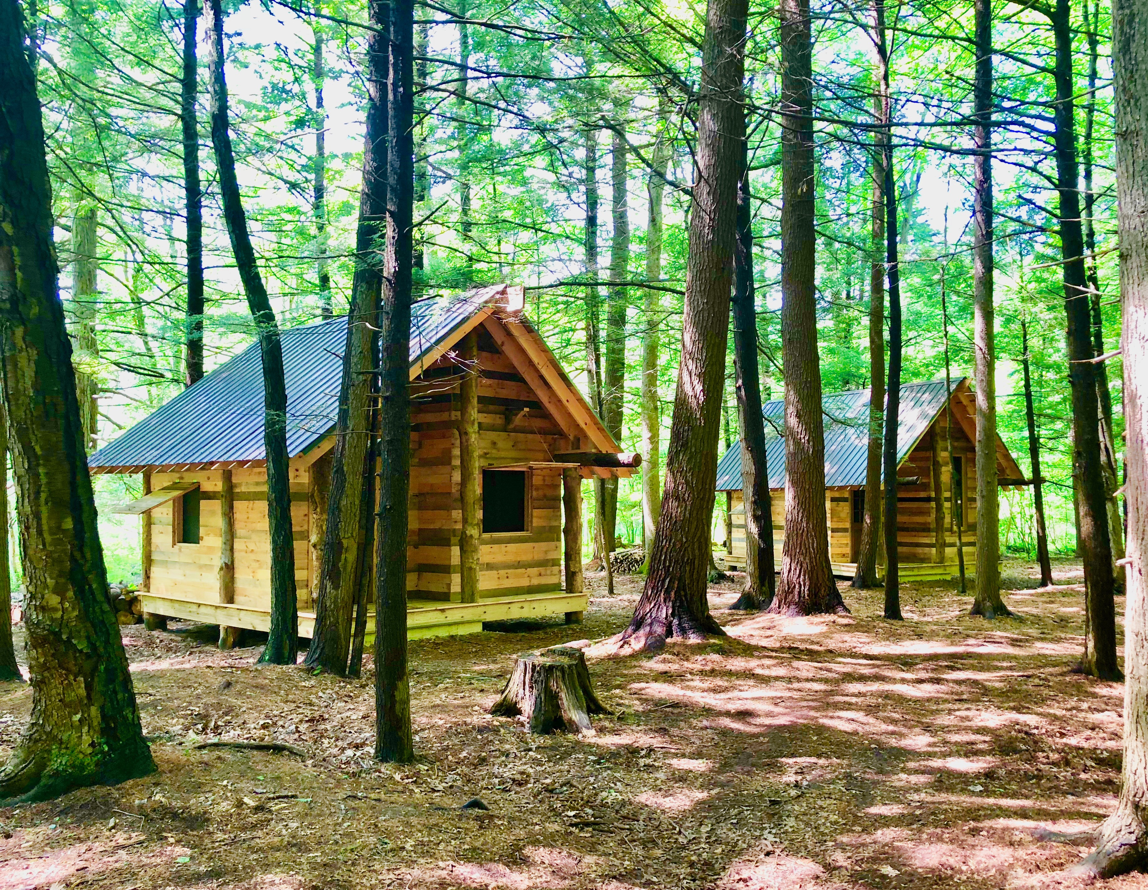 Timbertown Cabin 1 Farm Stays For Rent In West Sand Lake New York United States