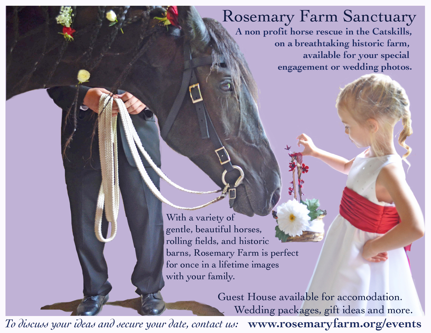 Guest House At Rosemary Farm Horse Sanctuary Farm Stays For Rent In South Kortright New York United States