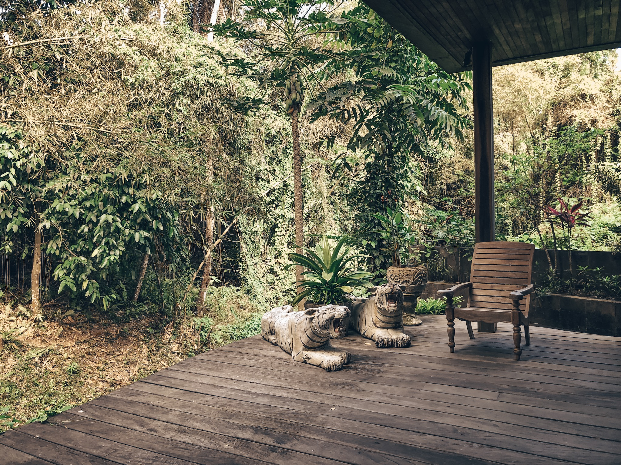 Dragon House Bali Airbnb