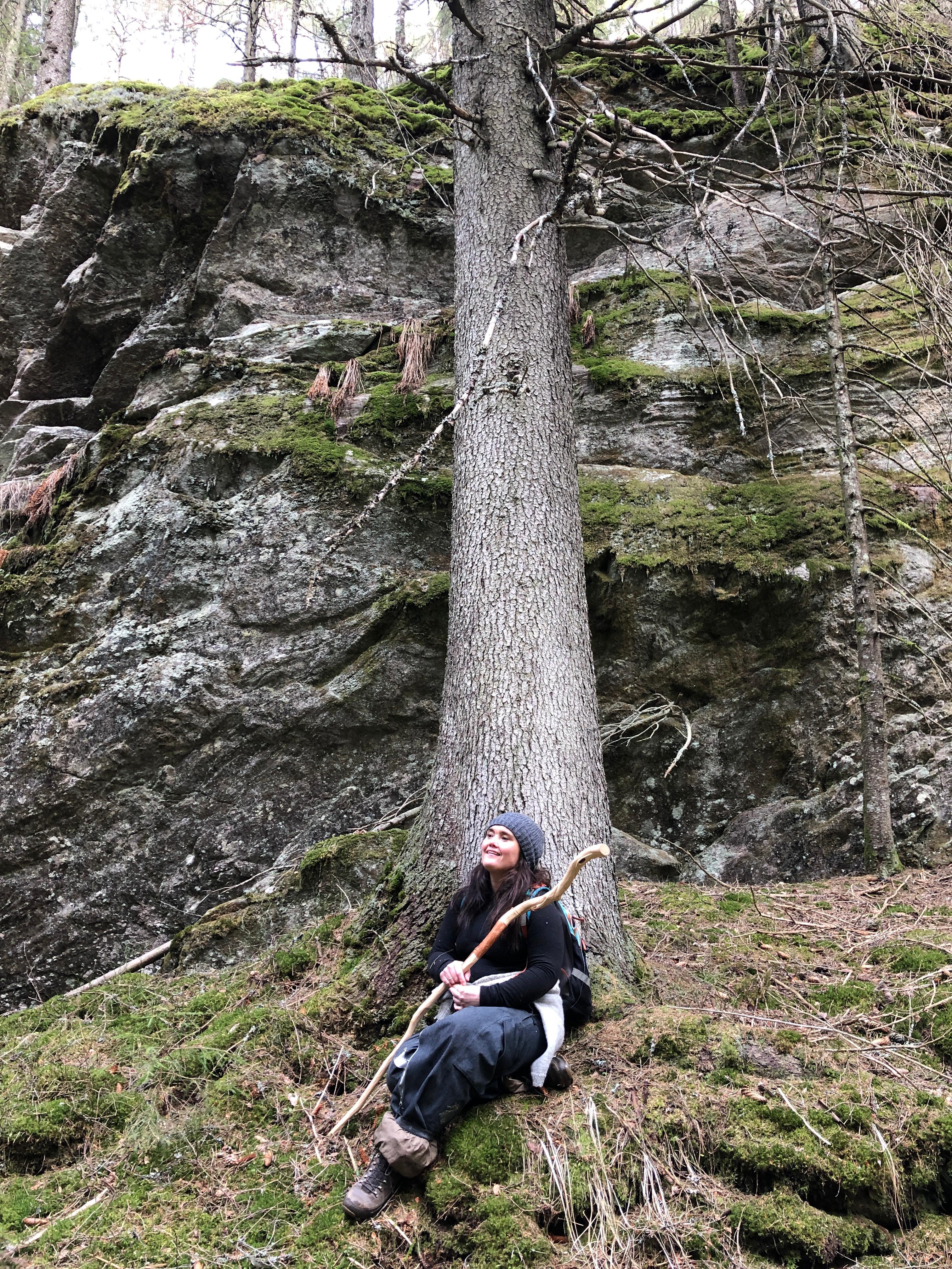 skoger dating steder